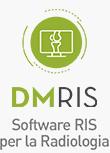 DM RIS